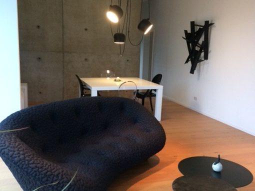 Recherche de mobiliers salon-salle à manger Colmar